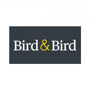 logo bird and bird