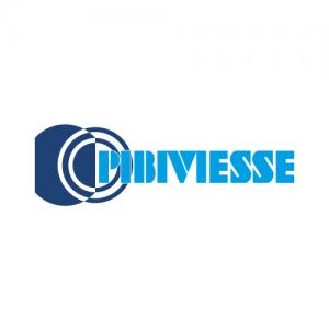 logo pibiviesse
