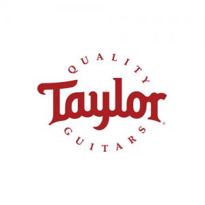 logo taylor